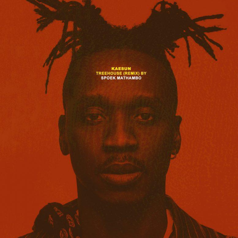 Treehouse (Spoek Mathambo Remix)